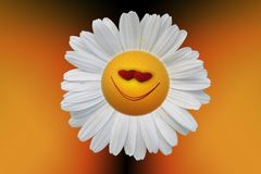 Flower, Yellow, Close Up, Macro Photography Royalty Free Stock Photos