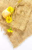 The flower yellow color on sacks texture. Royalty Free Stock Photography