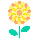 Flower yellow flat illustration Royalty Free Stock Image