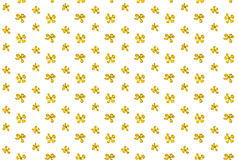 Flower yellow rape, colza tiny small spring summer wildflowers r Stock Image