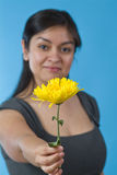 A flower for you.1 Royalty Free Stock Photography