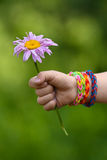 Flower in young girl's hand with rubber band bracelets Royalty Free Stock Photo