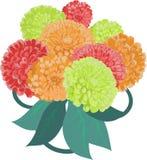 Flower zinnia bouquet Royalty Free Stock Photos