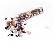 Flower1 Imagen de archivo libre de regalías