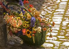 Flowerbasket. Bunch of flowers in the woven basket Stock Images