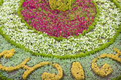 Flowerbed που θεραπεύεται λεπτά με τα άσπρα, κίτρινα και ρόδινα λουλούδια Στοκ φωτογραφία με δικαίωμα ελεύθερης χρήσης