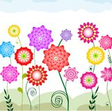 Flowerbed. Varicoloured complete flowers on a flowerbed Stock Photography