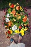 flowerbed Стоковая Фотография RF