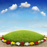 Flowerbed. The beautiful Background with Flowerbed Royalty Free Stock Photos