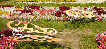 Flowerbed with butterflies Stock Photo