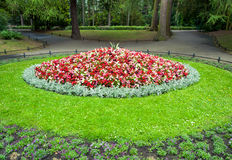 Flowerbed in city park Stock Image