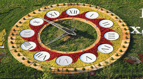 Flowerbed clock Stock Images
