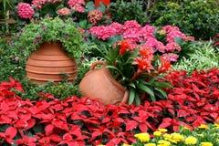 Flowerbed con gallipot immagini stock