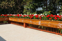 Flowerbed decorating on the terrace Royalty Free Stock Photo