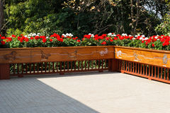 Flowerbed decorating on the terrace Stock Images