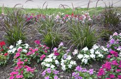 Flowerbed decoration in the Park from Washington DC in USA Royalty Free Stock Image