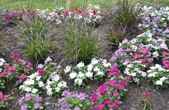 Flowerbed decoration in the Park from Washington DC in USA Stock Photography