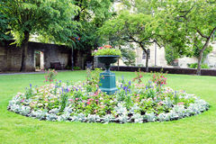 Flowerbed del giardino immagine stock