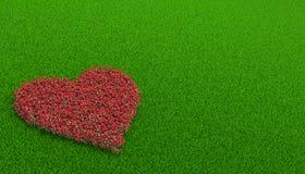 Flowerbed delle rose in una forma di cuore Fotografia Stock
