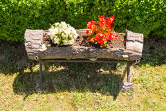 Flowerbed in the Dryanovo Monastery in Bulgaria Stock Photo