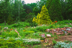 Flowerbed, drzewa I Cuted, Krzaki W ogródzie Zdjęcie Stock