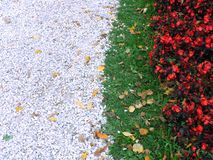 Flowerbed edge Royalty Free Stock Photo