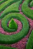 Flowerbed extravagante Fotografia de Stock