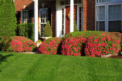 Flowerbed in Front of House Royalty Free Stock Photo