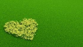 Flowerbed giallo dentro di una forma di cuore Fotografia Stock Libera da Diritti