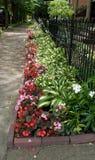 Flowerbed lungo il marciapiede fotografia stock