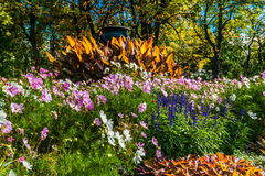 Flowerbed in Moscow Gorky park. Pot-au-feu composition stock photos