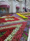 Flowerbed near GUM (State Department Store). GUM is the State Department Store extended along Red Square in Moscow, Russia Royalty Free Stock Photos