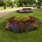 Flowerbed in park Royalty Free Stock Photo