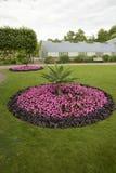 Flowerbed in park Stock Image