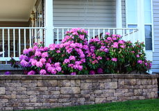 Flowerbed by Porch Stock Photo