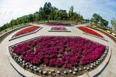 Flowerbed, urban park infrastructure stock images
