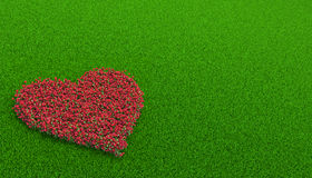 Flowerbed of roses in a shape of heart Stock Photography