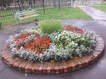 Flowerbed round Stock Images