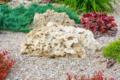 Flowerbed with stones and bushes as a decorative elements. Royalty Free Stock Photography