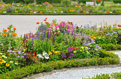 flowerbed in the summer park Stock Images
