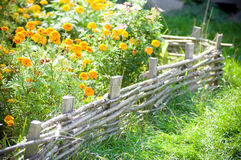 Flowerbed to garden Royalty Free Stock Photos