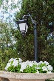 Flowerbed under a lantern stock image