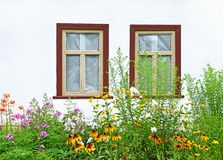 Flowerbed under vintage window Royalty Free Stock Photos