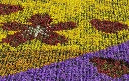 Flowerbed variopinto Immagine Stock