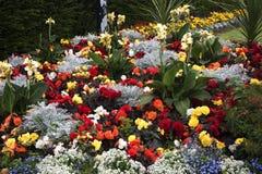 Flowerbed w parku w targowym miasteczku Sandbach Anglia Obrazy Royalty Free