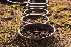 Flowerbed z garnkami i rośliien flancami zdjęcie stock