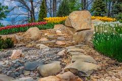 Flowerbed z tulipanami w jardzie Obraz Stock