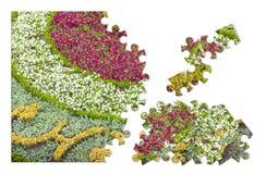 Flowerbed znakomicie leczący - pojęcie wizerunek w łamigłówka kształcie zdjęcia stock