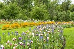 Flowerbeds στο πάρκο στοκ εικόνα