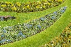 Flowerbeds весной стоковые фото